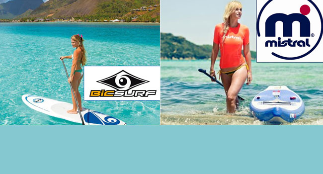 BIC-Mistral-SUP-Events