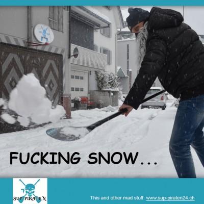 Kampagne Fuckin-Snow 8.03.2016