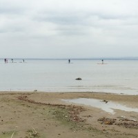 Stand-Up-Paddling-Bodensee
